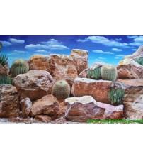 Arka Fon 10 cm (bulutlu çöl) Yükseklik 46 Cm