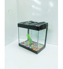 Hediyelik Luks Japon Akvaryumu  (2 ad japon+Akvaryum+Filtre+Kum+Bitki+Yem 1 Ad Ücretsiz kargo