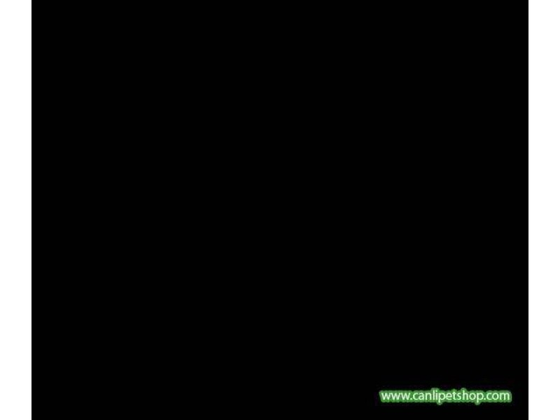 Arka Fon 10 cm (siyah) Yükseklik 30 Cm