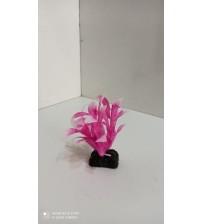Plastik Bitki 10 cm Alternanthera