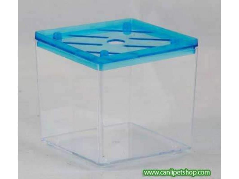 Mini Betta Kabı (Kardelen)