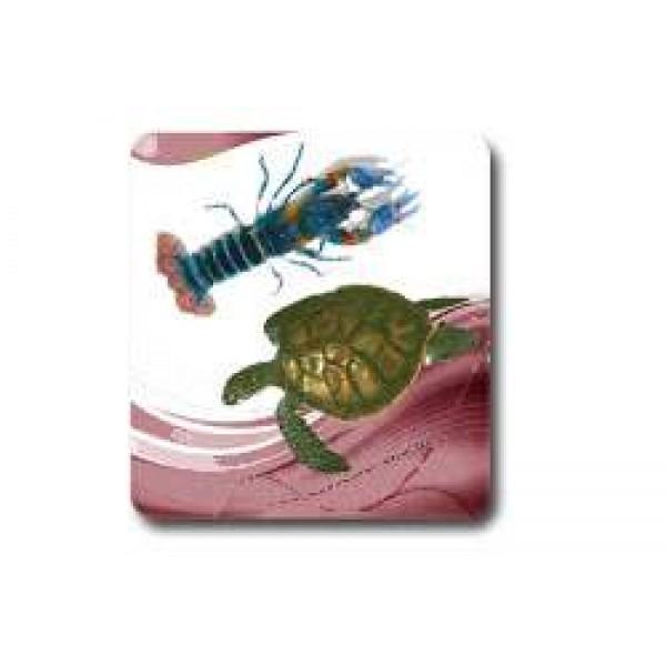 Kaplumbağa-Kerevit-Karides Yemi
