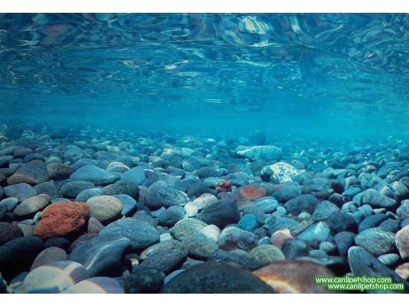 Arka Fon 10 cm (Nehir Taşları) Yükseklik 30 Cm