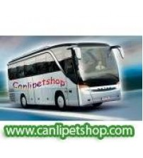 ..Otobüs Nakliye Ödemesi (250 tl ve üstü alımlar içindir)