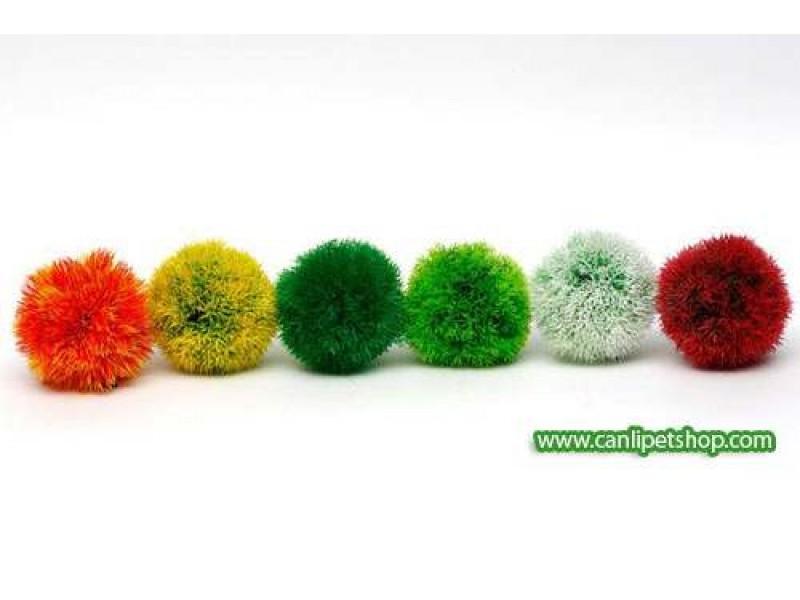 Renkli Yosun Topu (Moss Ball) Plastik Bitki